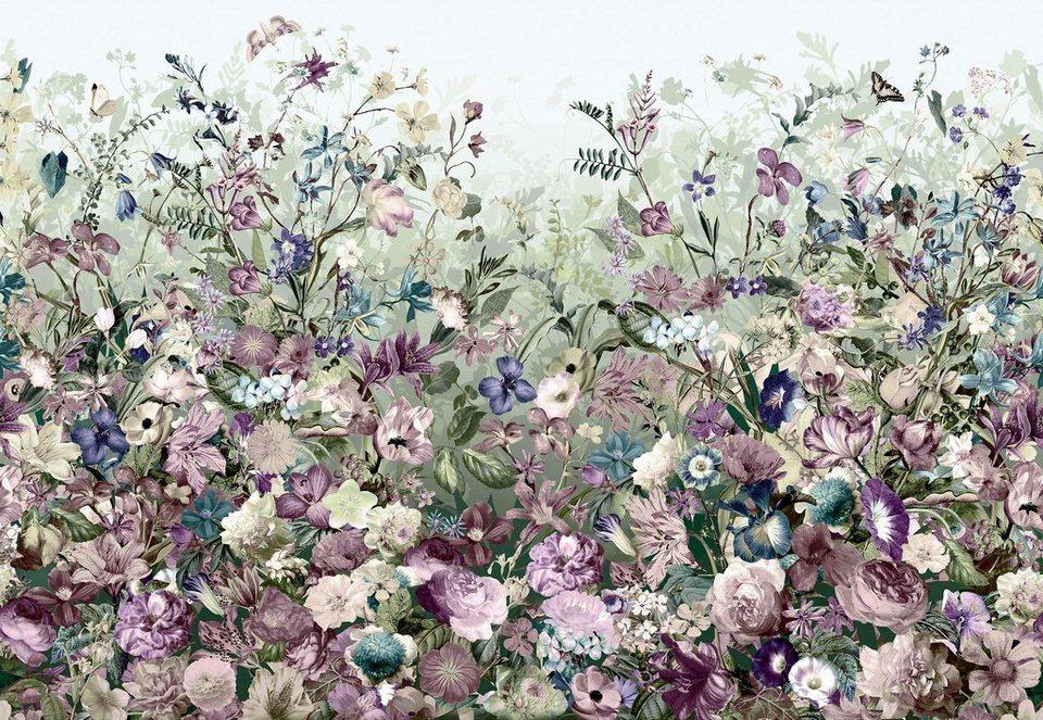 Komar Vliestapete »Botanica«, 368/248 cm in bunt