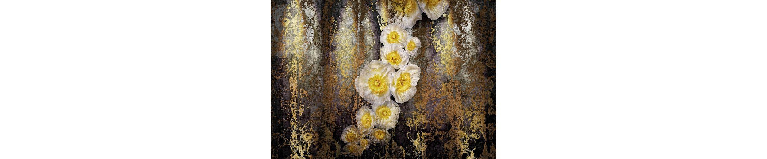 Komar Papiertapete »Serafina«, 368/254 cm
