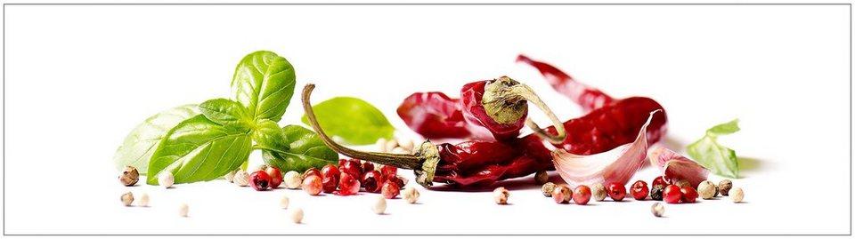 Küchenrückwand - Spritzschutz »profix«, Herbs & Spice, 220x60 cm in rot