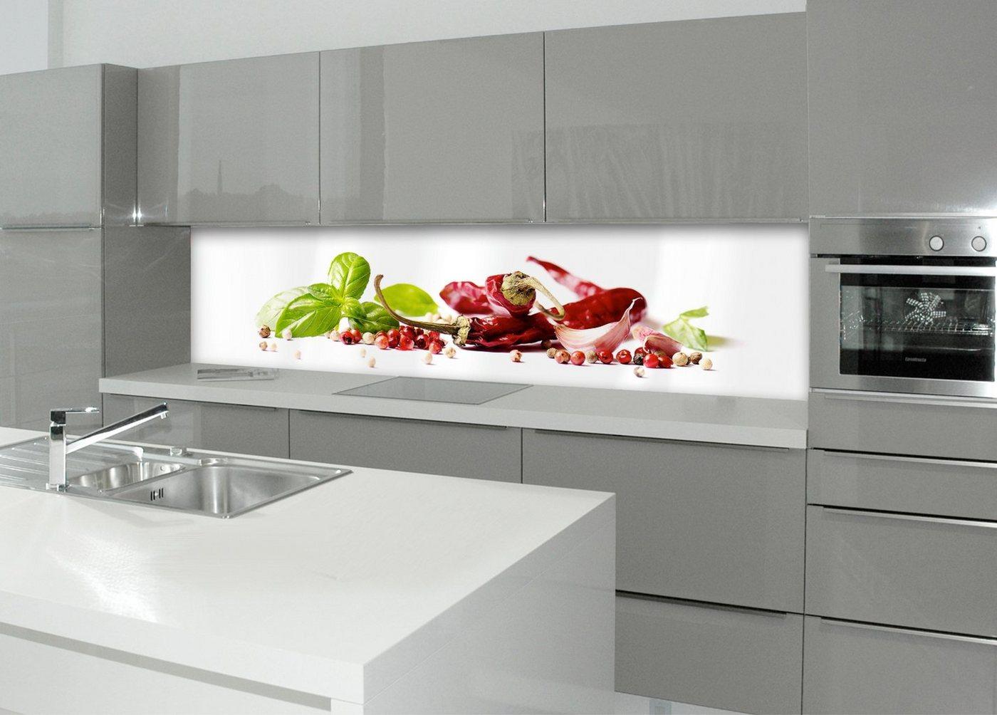 Küchenrückwand - Spritzschutz »profix«, Herbs & Spice, 220x60 cm
