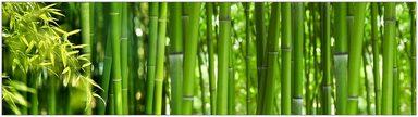 Küchenrückwand - Spritzschutz »profix«, Bambus, 220x60 cm