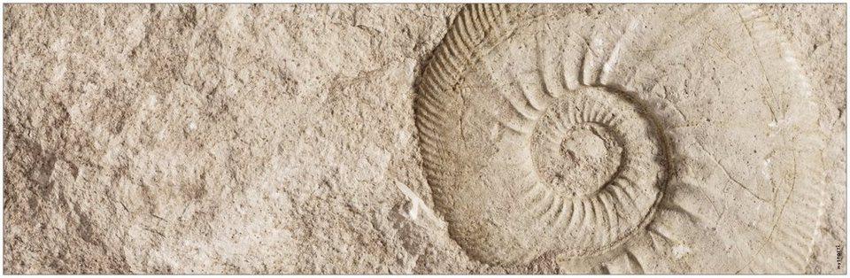 Badrückwand »aqua«, Fossil, in 3 Breiten in natur