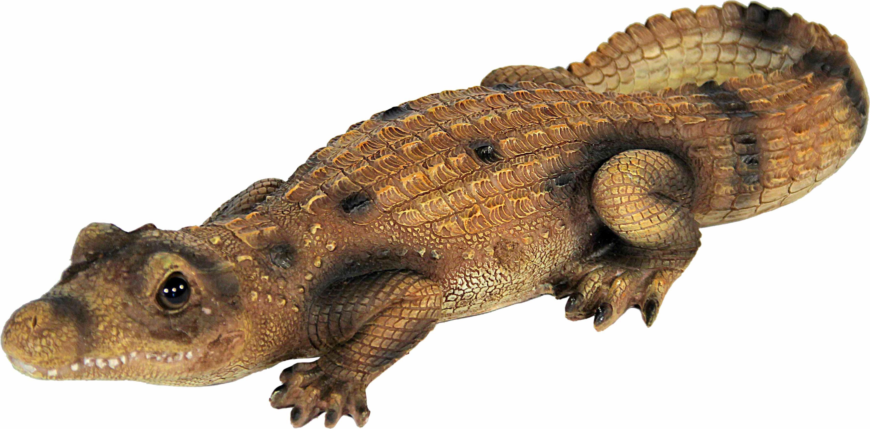 Home affaire Dekofigur »Krokodil, braun«
