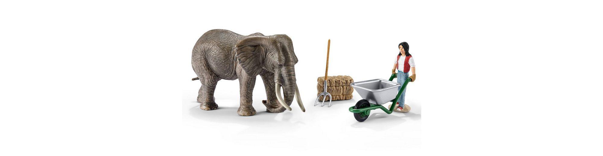 Schleich® Spielfiguren-Set, »World of Nature Wild Life - Elefantenpflege«