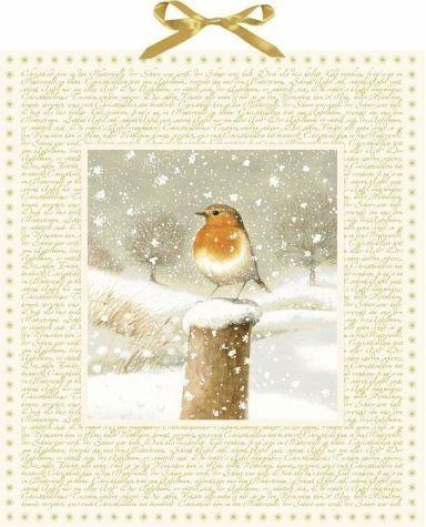 Allgemeine Handelsware »Marjoleins Winterwelt Adventskalender«