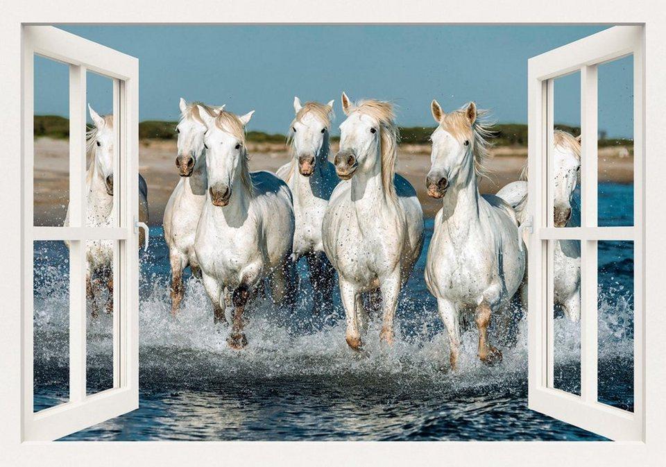 Home affaire Leinwandbild »V. Petrakov: Fensterblick - Camargue Pferde am Strand, 100/70 cm in Weiß