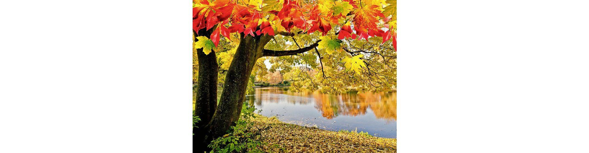 Home affaire Glasbild »D. Oberfrank-List: Wundervoller Herbsttag an einem ruhigen See«, 80/60 cm