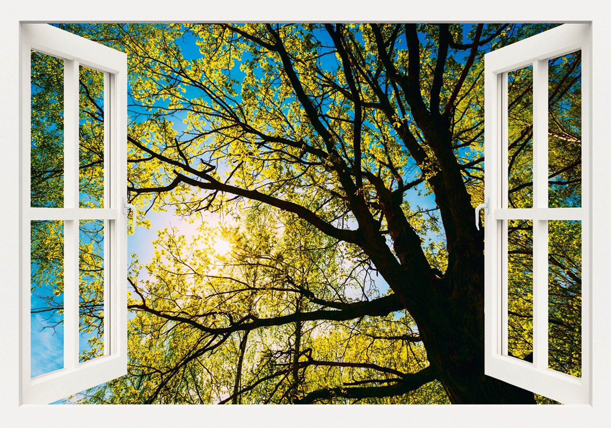 Home affaire Leinwandbild »Grisna Bruev: Frühlingssonne, durch die Baumkrone einer Eiche«, 100/70 cm