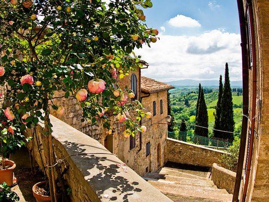 Home affaire Glasbild »banepetkovic: Rosen in San Gimignano, mit Toskanalandschaft«, 80/60 cm