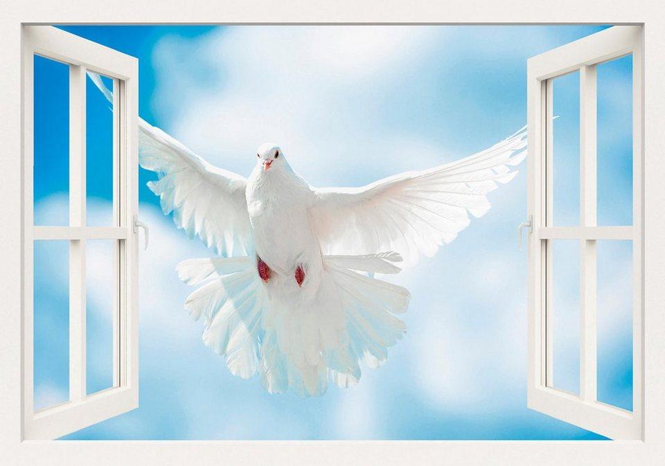 Home affaire Leinwandbild »A. Kuba: Taube mit ausgebreiteten Flügen vor der Sonne«, 100/70 cm in Weiß