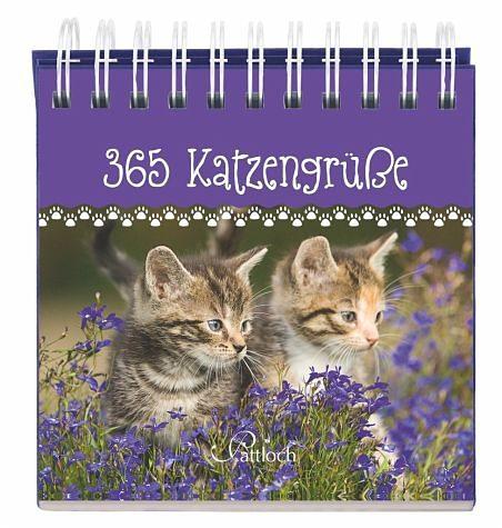 Gebundenes Buch »365 Katzengrüße«