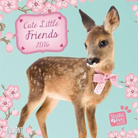 Kalender »Cute Little Friends - Kalender 2016«