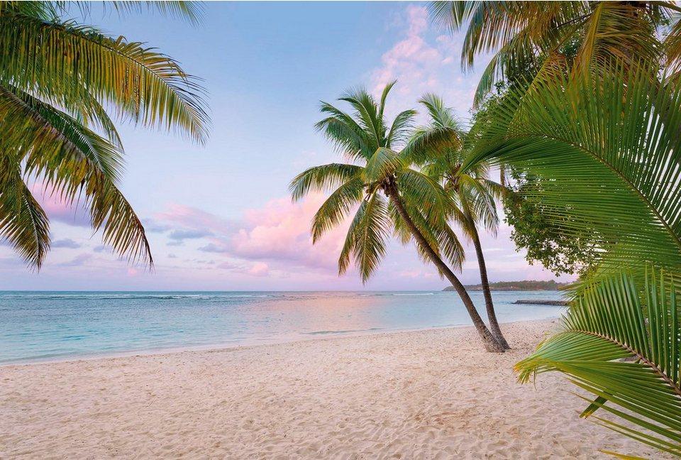 Komar Vlies Fototapete »Paradise Morning«, 368/248 cm in blau/beige