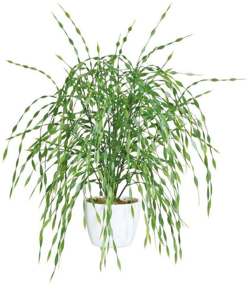 Kunstpflanze »Weidenbusch« in grün