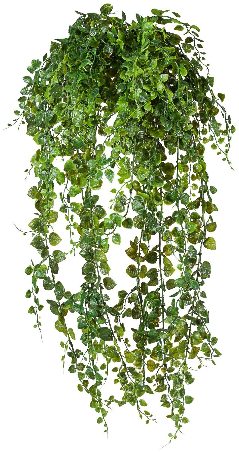 Kunstpflanze »Adianthumhänger«, H: 100 cm