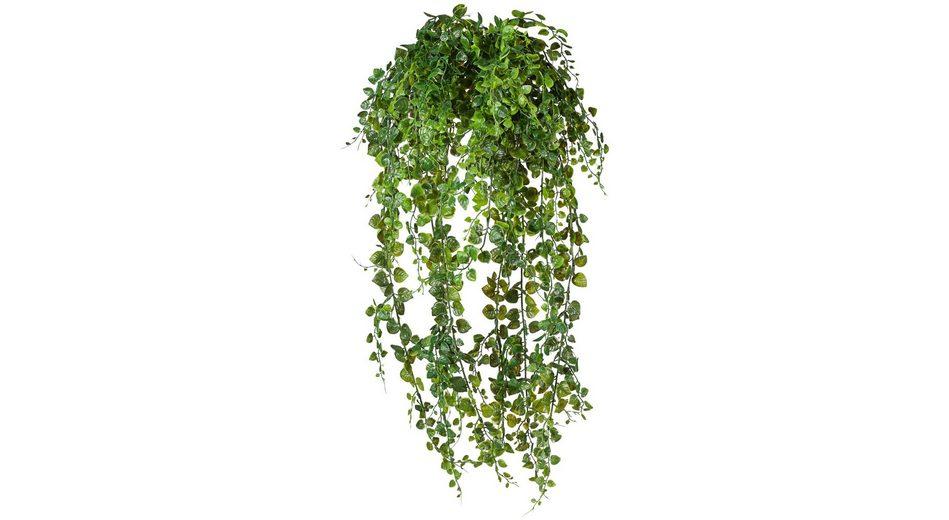 Kunstpflanze »Adianthumhänger«