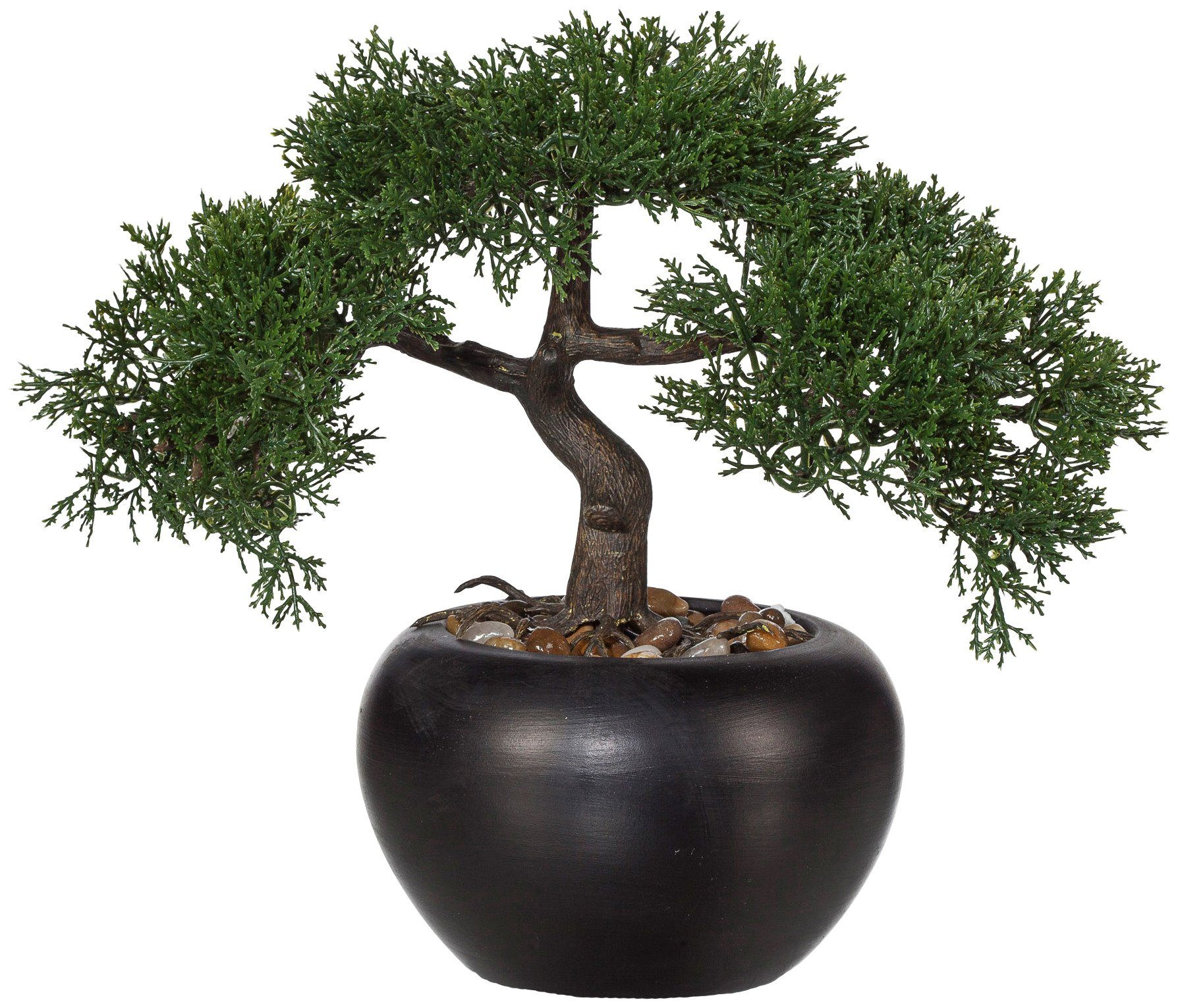 Kunstpflanze »Bonsai Zeder«, H: 26 cm
