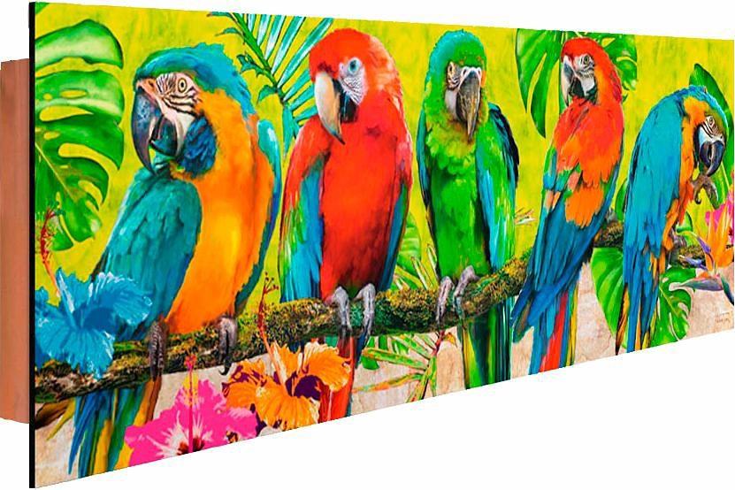 Home affaire Deco Panel »Michael Tarin - Papageien«, 90/30 cm