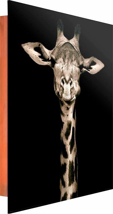 Home affaire Deco Panel »Giraffe«, 40/50 cm