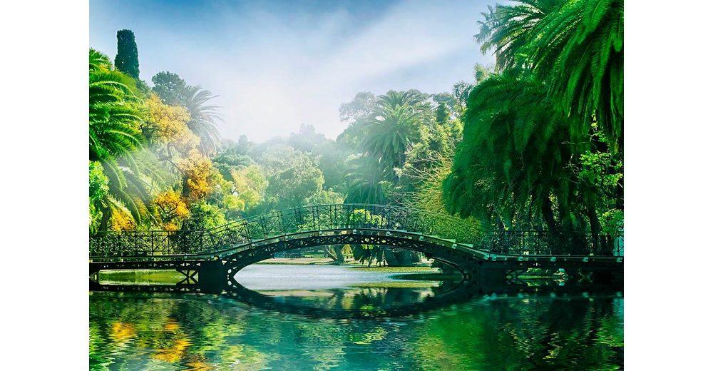 Home affaire Fototapete »Brücke im Sonnenlicht«, 366/254 cm