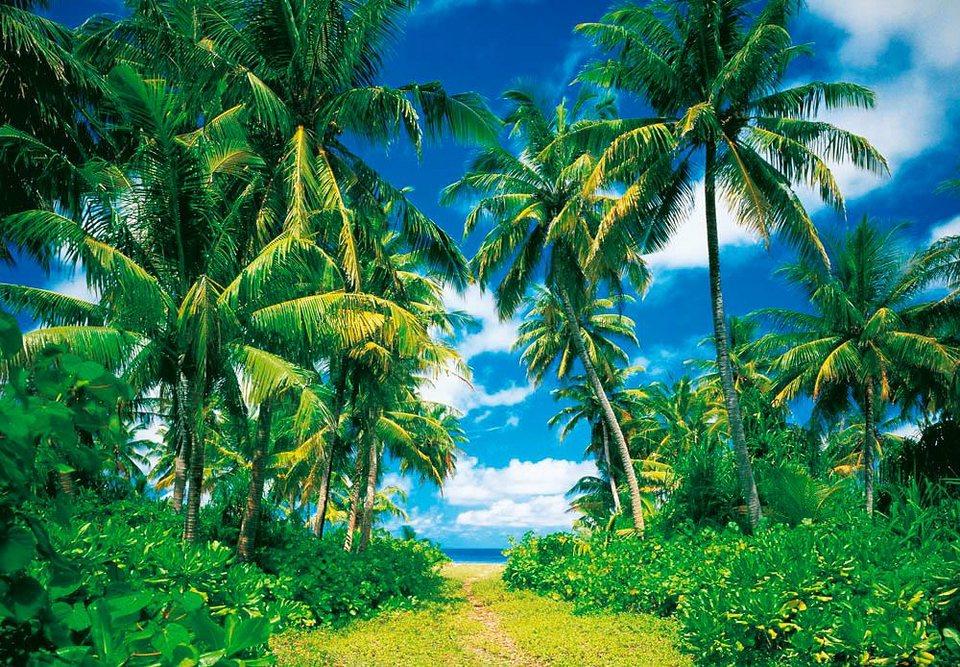 Home affaire Fototapete »Insel in der Sonne«, 366/254 cm in grün/blau