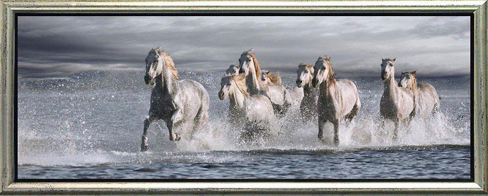 Home affaire, Schattenfugenbild, »Rennende Pferde im Wasser«, 100/38 cm in hellblau/wei