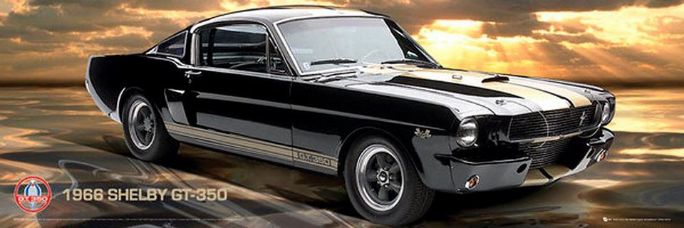 Home affaire, Deco Panel, »Ford Shelby GT 351«, 90/30 cm in schwarz/grau