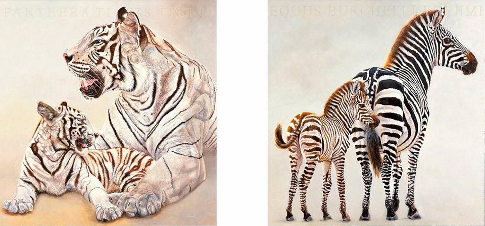Home affaire, Deco-Panel, »Zebra und weiße Tiger«, 2x 30/30 cm in weiß/schwarz
