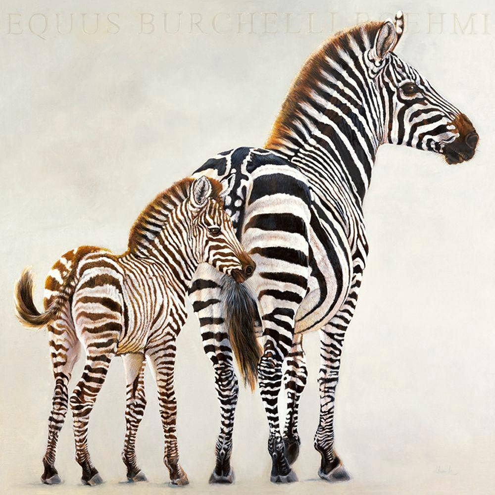 Home affaire, Deco Panel, »Zebras«, 70/70 cm