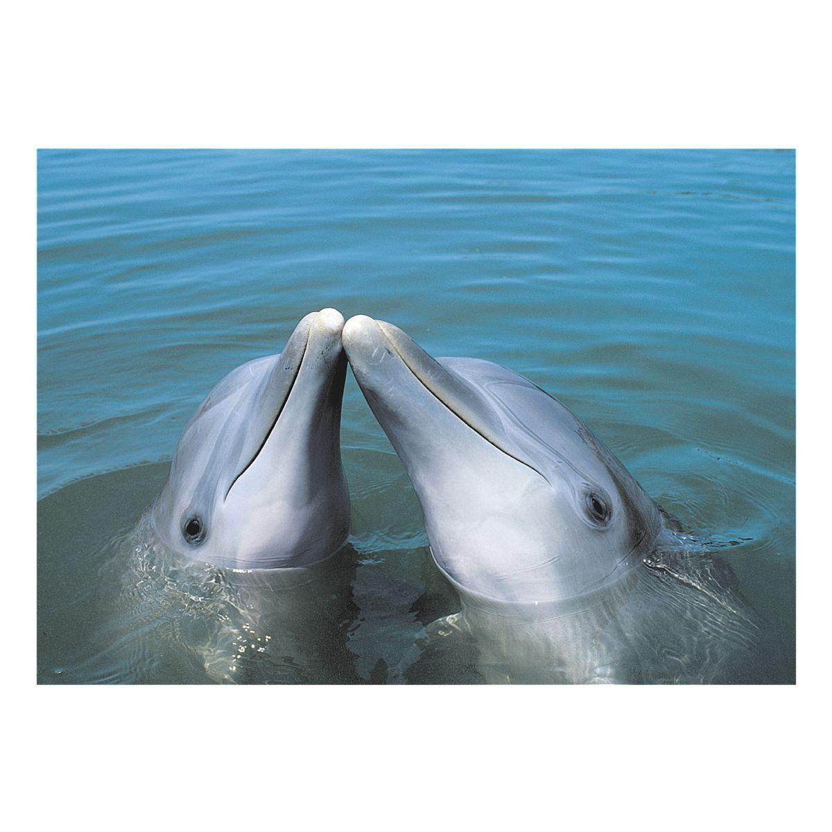 Veloflex Schreibunterlage »Delfine«