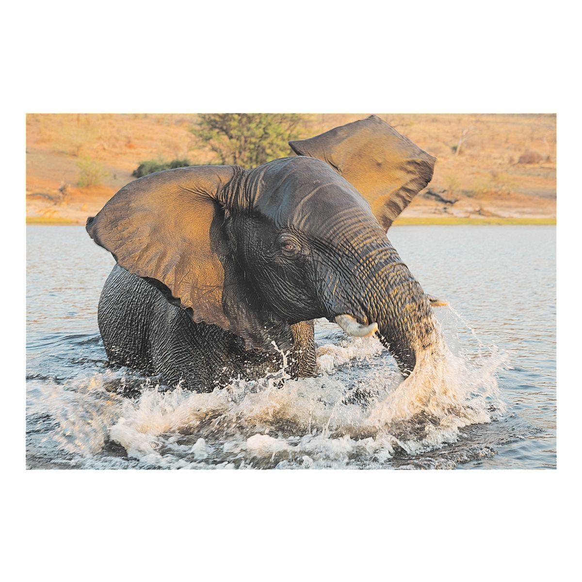 Veloflex Schreibunterlage »Elefant«