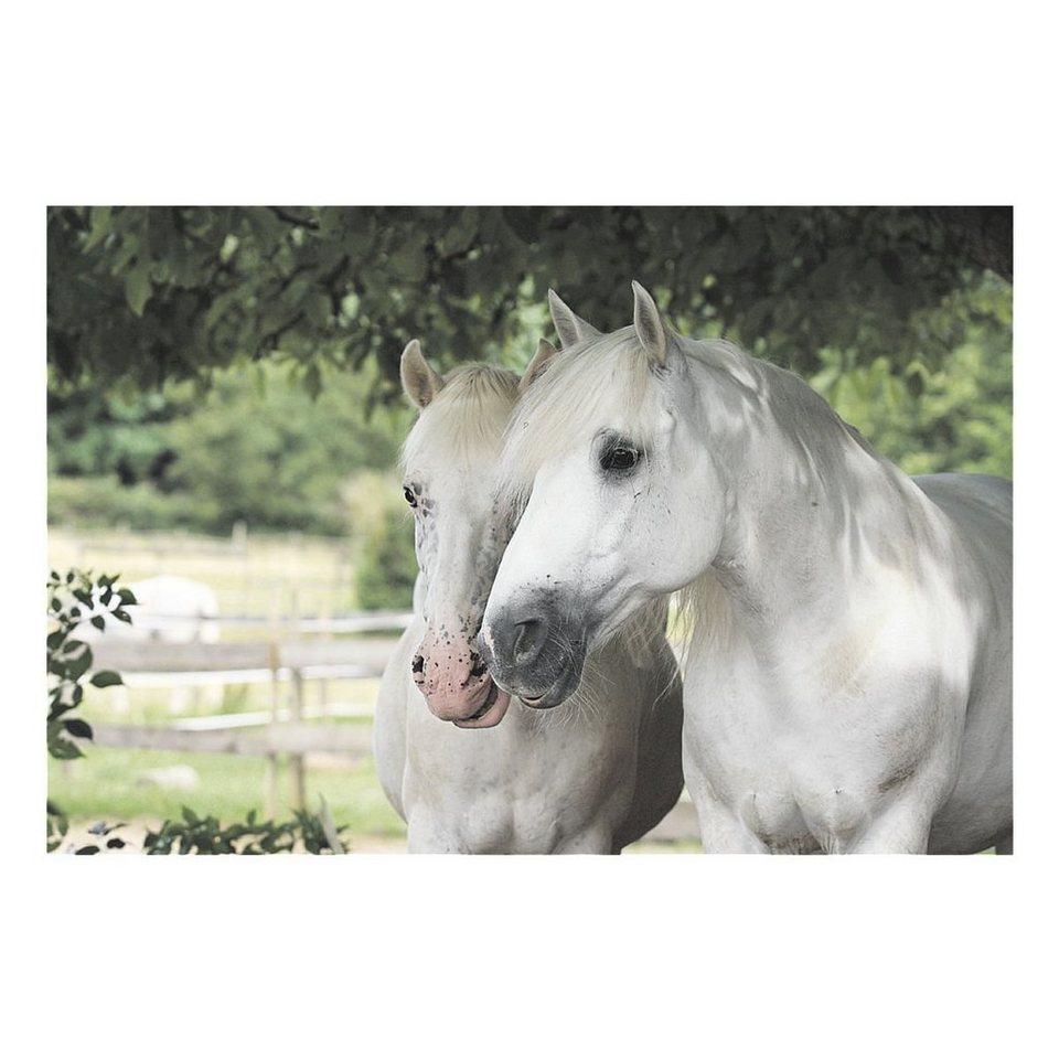 Veloflex Schreibunterlage »Pferde«