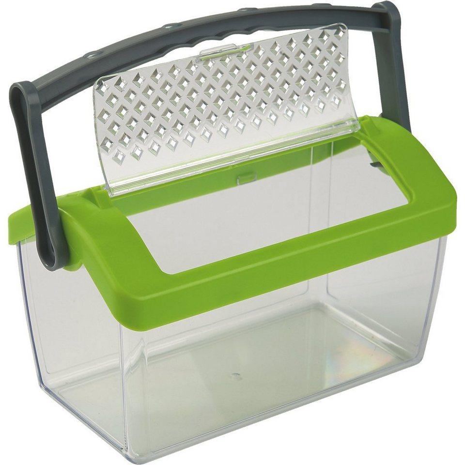 Haba TERRA KIDS Insektenbox online kaufen