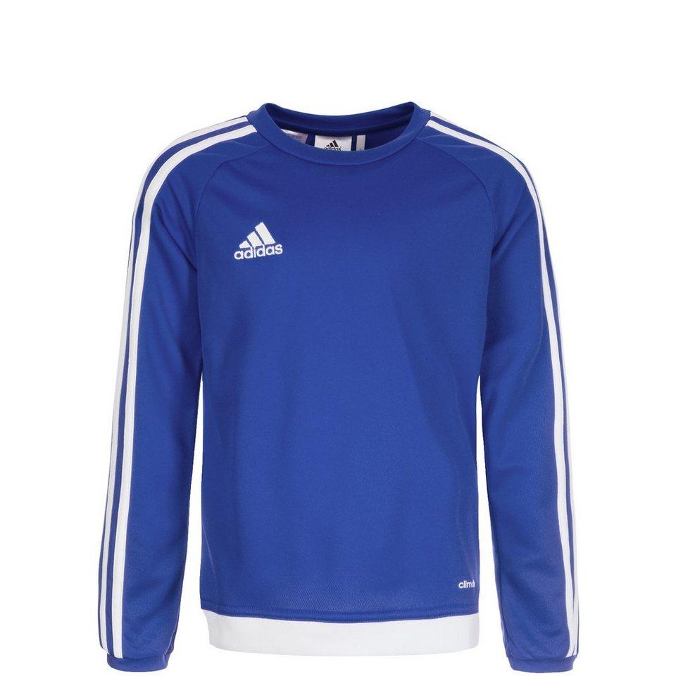 adidas Performance Estro 15 Trainingsshirt Kinder in blau / weiß