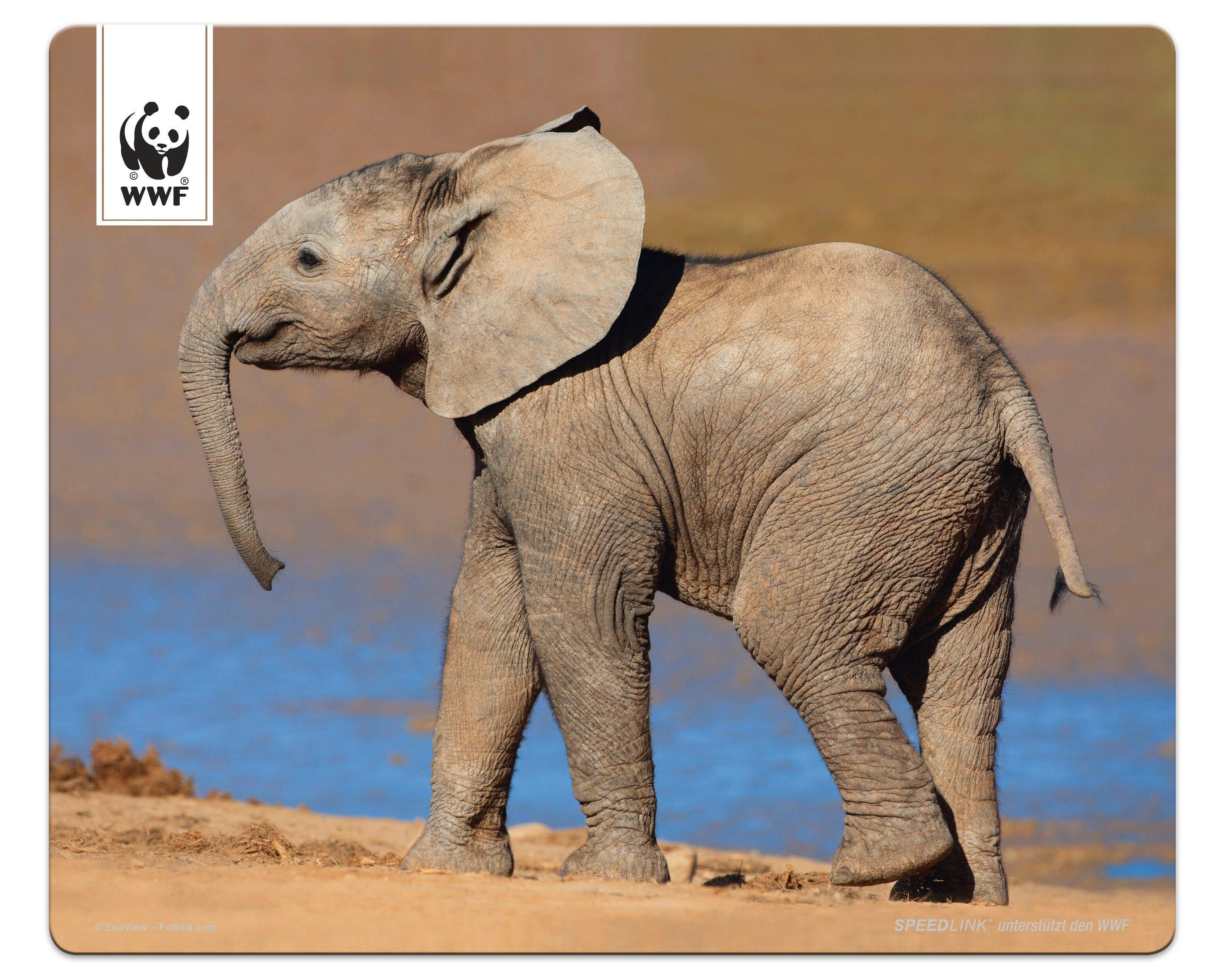 SPEEDLINK Mauspad »TERRA WWF Mousepad Elefant«