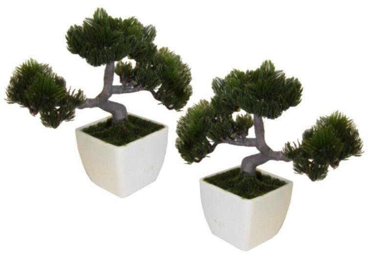 Home affaire Kunstpflanze »Bonsai« (2-tlg.)