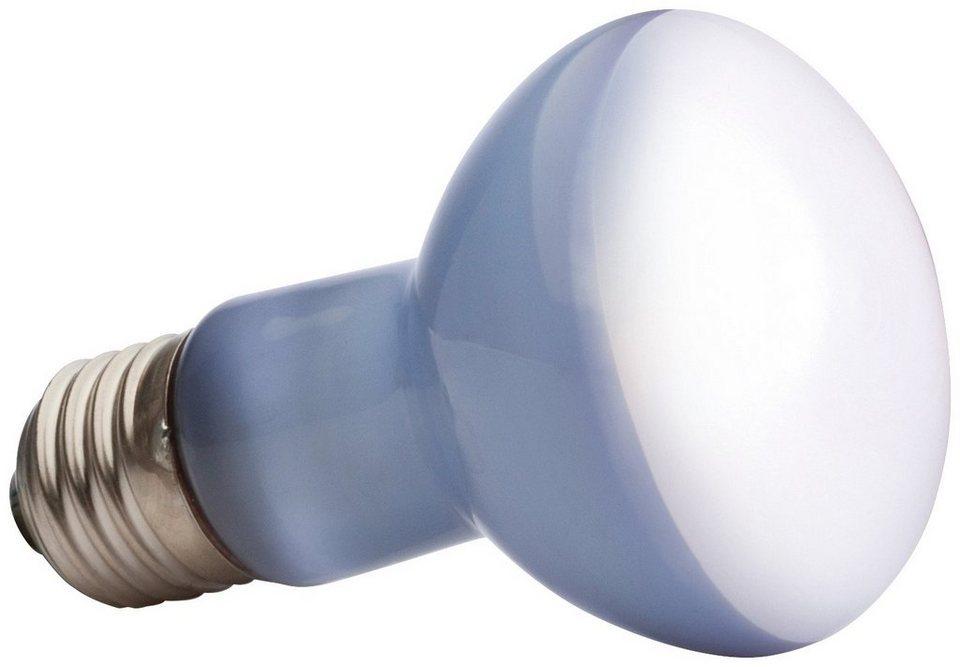 Terrarien-Beleuchtung »EX Neodymium Tageslichtleuchte Spot« in weiß