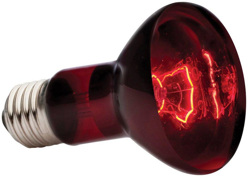 Terrarien-Beleuchtung »EX Infrarot-Wämelampe Heat« in rot