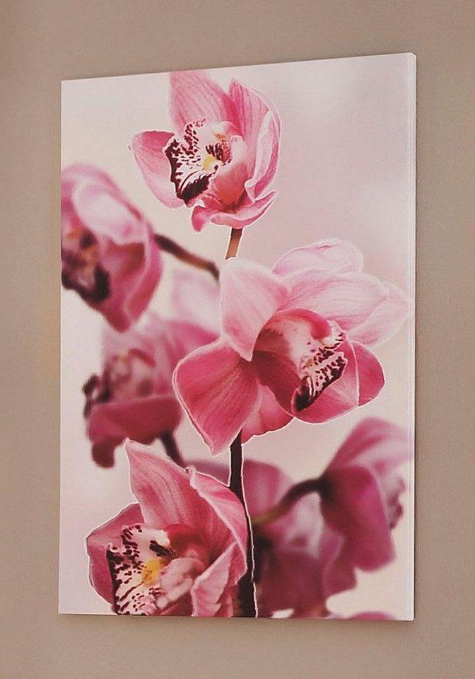 Home affaire Wandbild »Rosa Orchidee« in rosa
