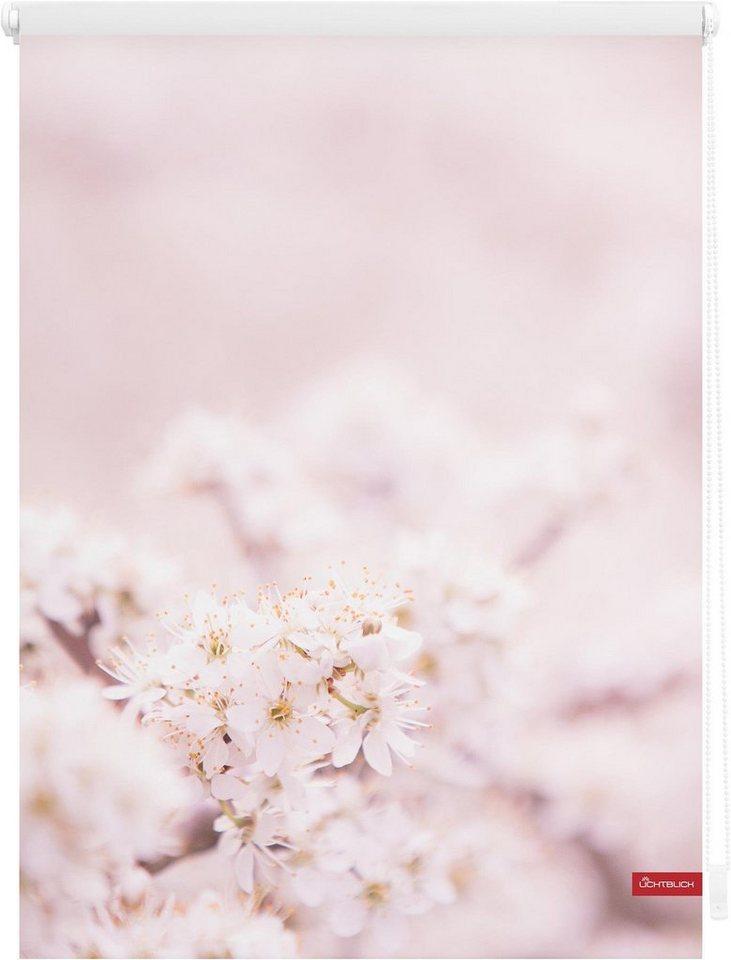 Seitenzugrollo, Lichtblick, »Klemmfix Dekor Kirschblüten«, Lichtschutz, Fixmaß, ohne Bohren in rosa weiß
