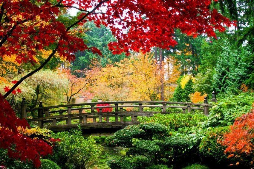 Home affaire Fototapete »Bridge in Japanese Garden«, 350/260 cm in grün/rot
