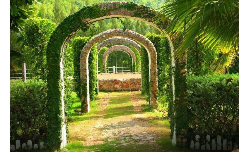 Home affaire Fototapete »Pergola Garden«, 350/260 cm