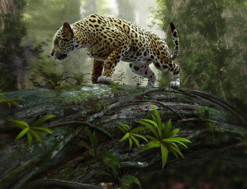 Home affaire Fototapete »Jaguar on the Prowl«, 350/260 cm in grün/grau