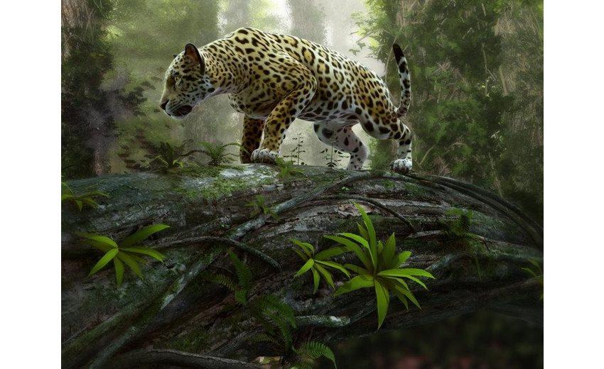 Home affaire Fototapete »Jaguar on the Prowl«, 350/260 cm