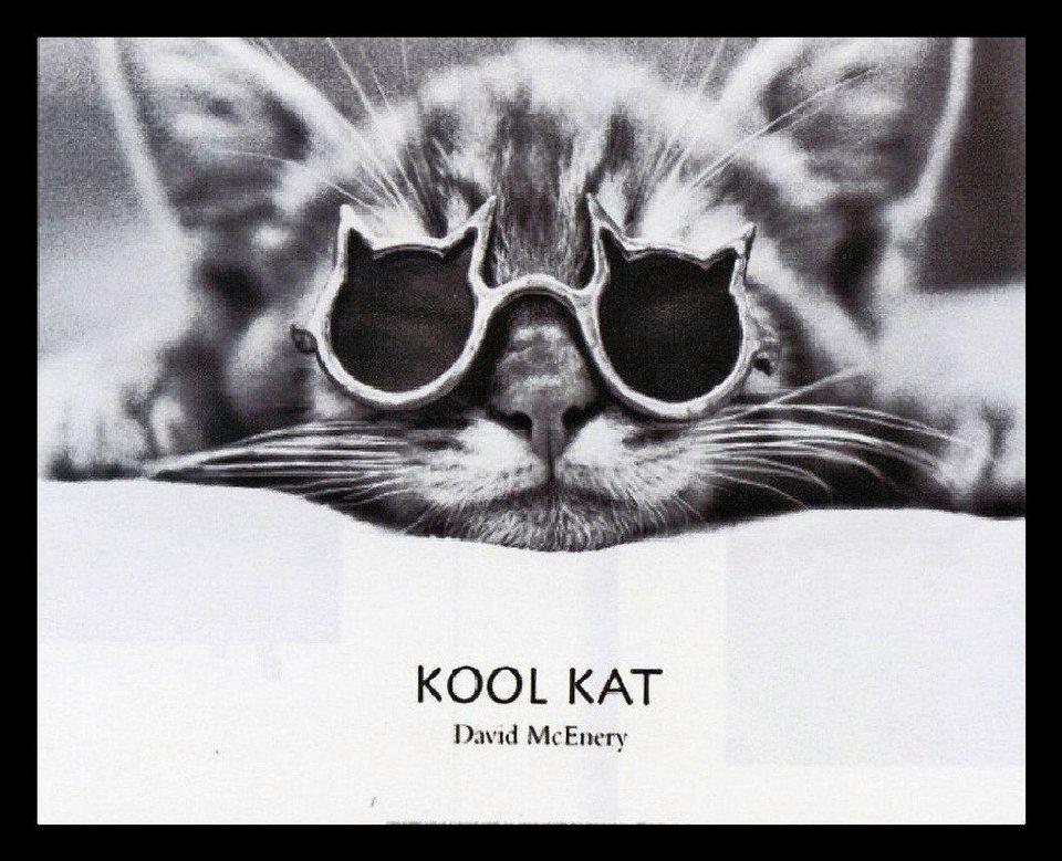 Home Affaire Gerahmtes Bild, »David McEnery / Kool Kat«, 56/46/2 cm in weiß/grau
