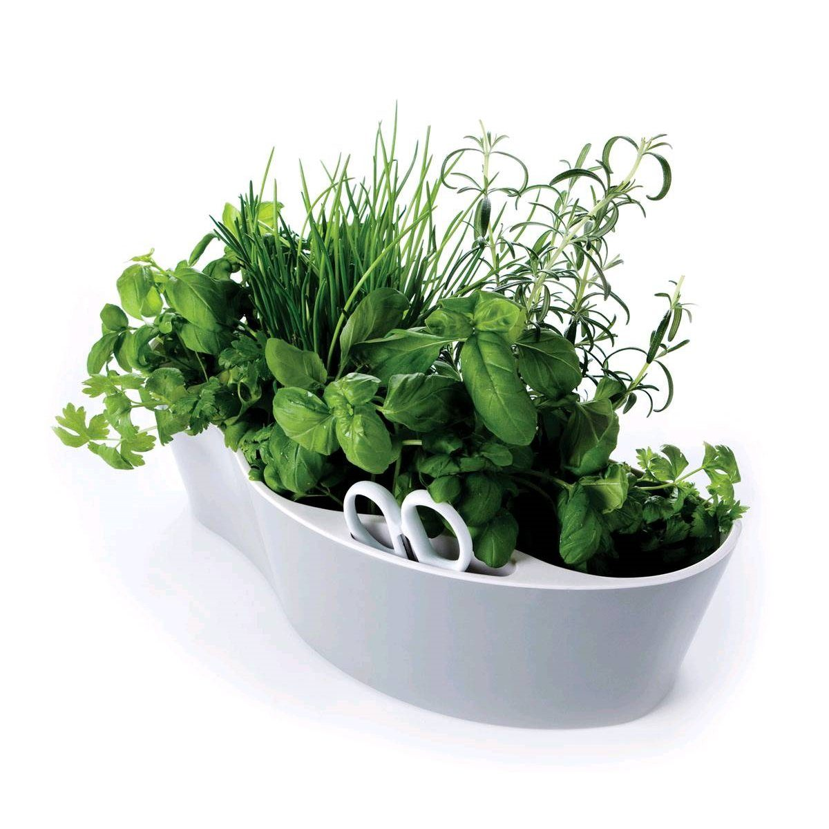 Royal VKB Royal VKB HERB GARDEN Kräuterinsel weiß-weiß