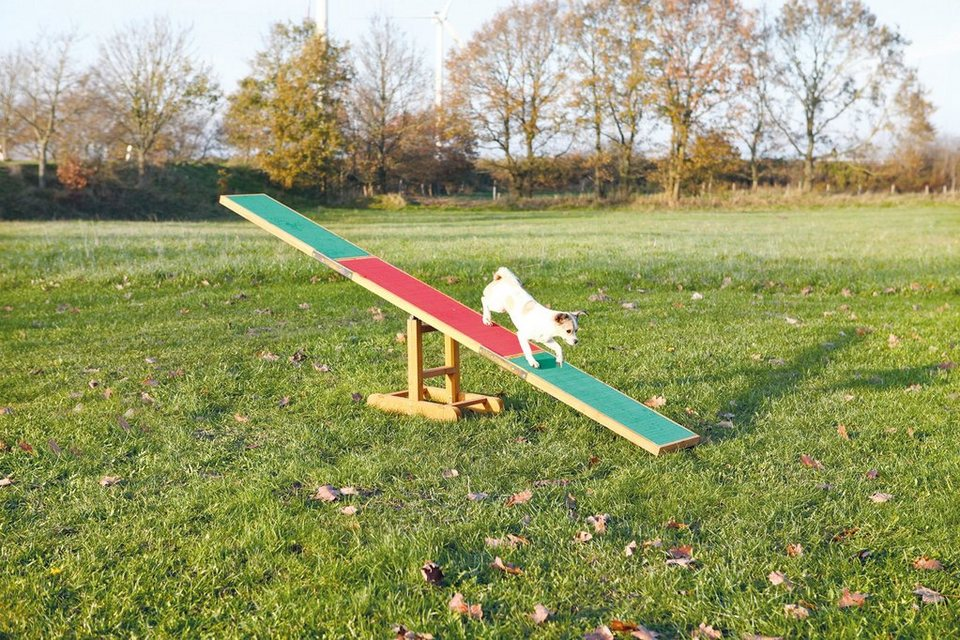 Hunde Agility Wippe, L/B/H: 300/34/54 cm in bunt