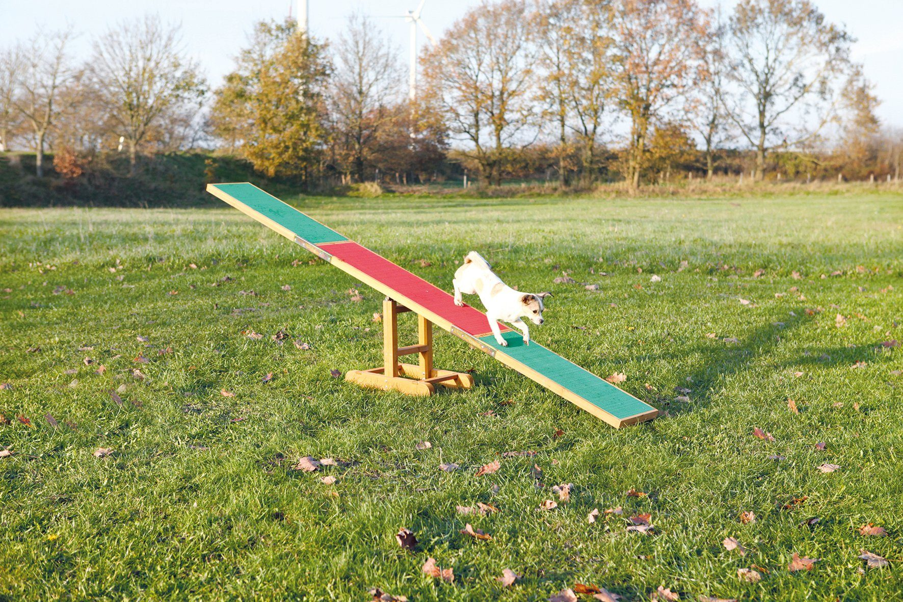 Hunde Agility Wippe, L/B/H: 300/34/54 cm