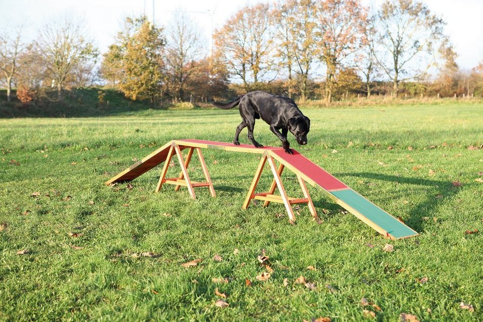 Hunde Agility Steg, L/B/H: 456/30/64 cm in bunt