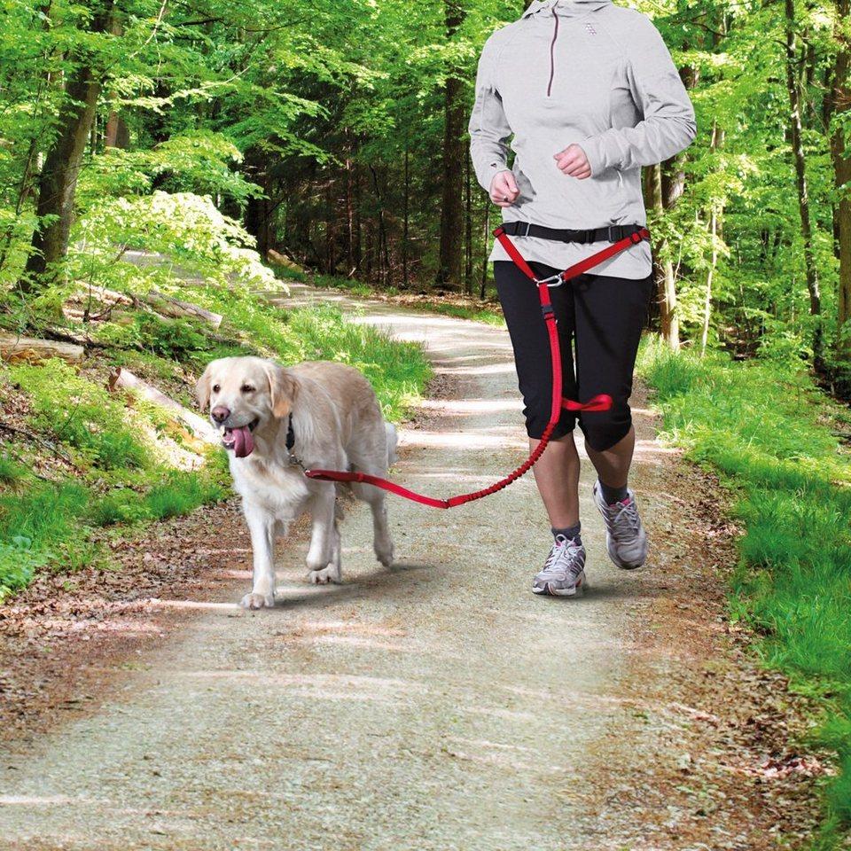 Bauchgurt mit Hundeleine, Länge Hundeleine: 110-150 cm in rot